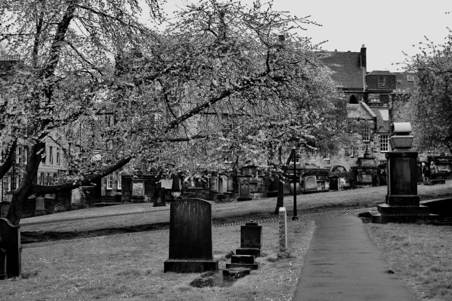 greyfriars cemitery