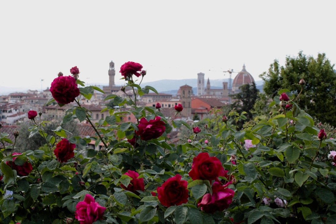 View to the Duomo